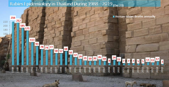 Rabies situation in Thailand 1988-2019 (as Oct 25, 2019)